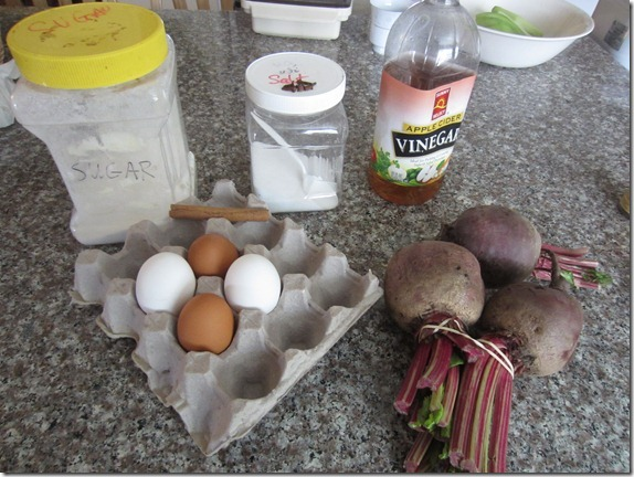 Beet Egg Recipe Cook Geek 004