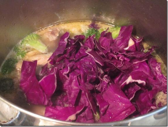 Turkey Stock Chicken Soup Recipe Cook Geek 016